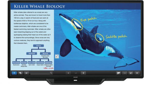 Das BIG PAD von Sharp, auch bekannt als interaktives Whiteboard.